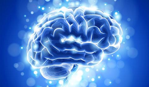 Lucruri interesante despre creierul uman